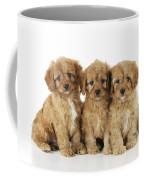 Cockapoo Puppy Dogs Coffee Mug