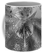 Coconut Palm Coffee Mug