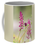 Common Fumitory Coffee Mug