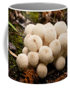 Common Puffball Mushrooms Lycoperdon Perlatum Coffee Mug