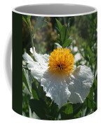 Coulter's Matilija Poppy 1 Coffee Mug