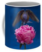 Count Bluebird Coffee Mug by Jean Noren