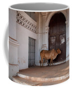 Cow At Church At Colva Coffee Mug