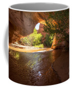Coyote Natural Bridge - Coyote Gulch - Utah Coffee Mug by Gary Whitton
