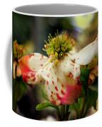 Cranberry Dogwoods Coffee Mug