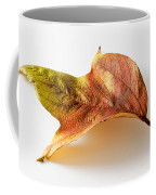 Cranberry Tree Leaf Isolated On White Coffee Mug