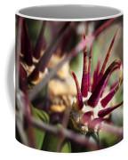 Crown Of Thorns Coffee Mug by Kelley King