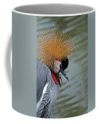 Crowned Crane Coffee Mug by Skip Willits