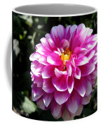 Dahlia Named Brian Ray Coffee Mug