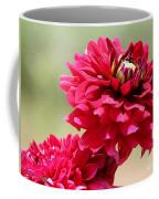 Dahlia Named Caproz Jerry Garcia Coffee Mug