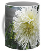 Dahlia Named Tsuki Yori No Shisa Coffee Mug