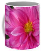 Dahlia Named Who Dun It Coffee Mug