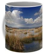 Daimiel Coffee Mug
