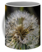 Dandelion With Water Drops Coffee Mug