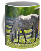 Dapple Grey Horse Coffee Mug