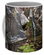 Darwin Falls Coffee Mug