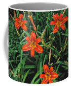 Day Lilly Coffee Mug