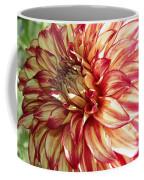 Dazzling Dahlia  Coffee Mug