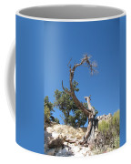Dead Tree At Grand Canyon Coffee Mug