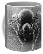 Dictynid Spider Coffee Mug
