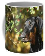 Dobermann Dog Coffee Mug