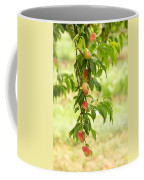 Donut Peaches Coffee Mug