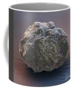 Dormant Water Bear Coffee Mug