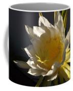 Dragon Fruit Blossom In Profile Coffee Mug