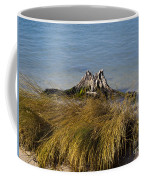 Driftwood In Beach Grass Coffee Mug
