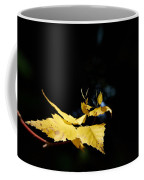 Early Fall Of  Downy Birch Coffee Mug