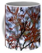Early Fall Of Rowan Coffee Mug
