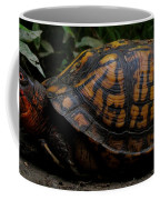 Eastern Box Turtle Coffee Mug