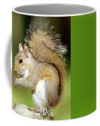 Eastern Gray Squirrel Coffee Mug