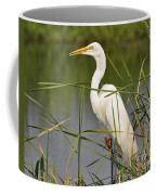 Egret In The Cattails Coffee Mug