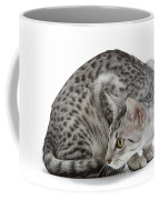 Egyptian Mau Cat Coffee Mug