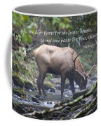 Elk Drinking Water From A Stream Coffee Mug