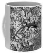 European Wall Lizard In Desenzano. Lago Di Garda Coffee Mug