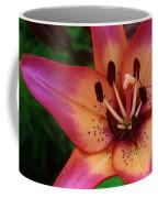 Explosion Of Color Coffee Mug