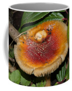 Fairy Mushrooms Coffee Mug