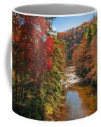 Fall Along The Linville River Coffee Mug