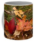 Fall Moss Carpet Coffee Mug