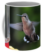 Female Anna's Hummingbird Coffee Mug