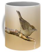 female Eurasian Blackcap Coffee Mug