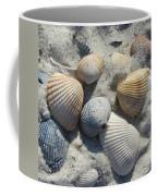 Fernandina Shells  Coffee Mug