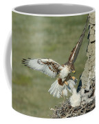 Ferruginous Hawk And Chicks Coffee Mug