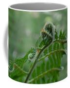 Fiddle Fern Coffee Mug