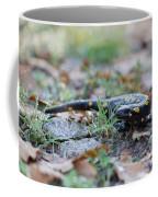 Fire Salamander Fog Droplets Coffee Mug