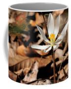 First Sign Of Spring 2 Coffee Mug