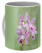 Five Beautiful Pink Orchids Coffee Mug