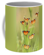 Flock Of Plain Tiger Danaus Chrysippus Coffee Mug by Alon Meir